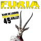 Furia sound system